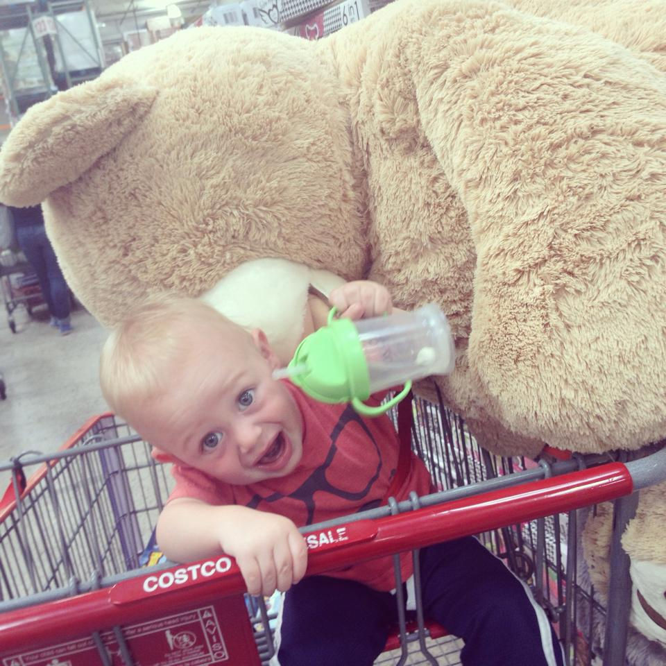 Big bear.